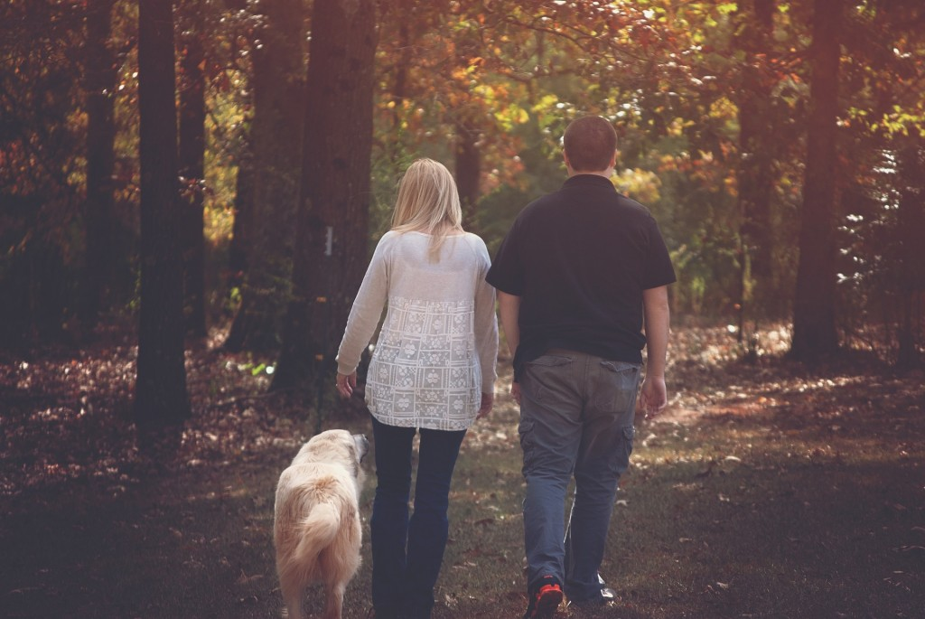 Once you arrive at your new home, take your pet on a walk to introduce him to the new neighborhood.